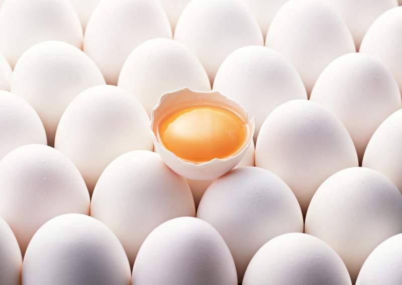 Купить Яйцо куриное Organic eggs, домашнее