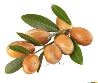Арганы (аргании) жирное масло, нерафинированное, экологически чистое (девственное)