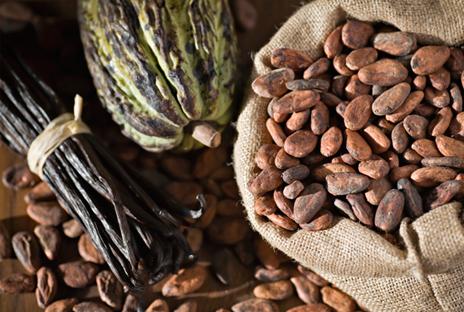 Какао рафинированное жирное масло