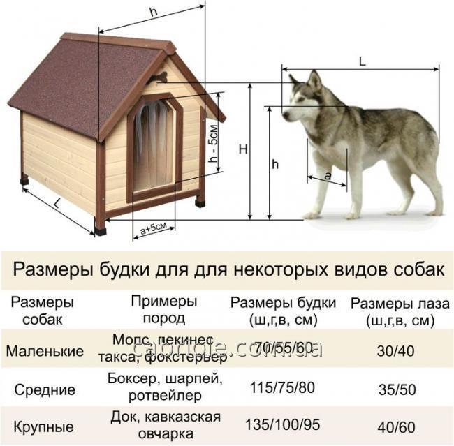 чертеж будки для собаки