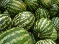 The water-melon is sweet not sluggish