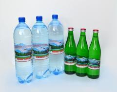 Минеральные воды:  Поляна квасова, Поляна купель, Лужанская
