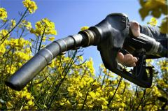 Environmentally friendly fuel