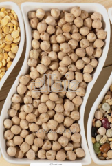 Bean for export, chick-pea