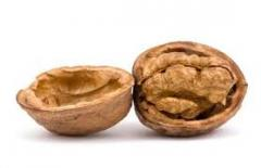 We sell walnut shell