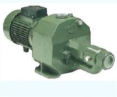 The pump SAER M150-200 Electric pump