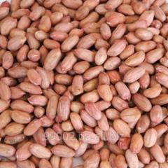 Peanut crude and fried