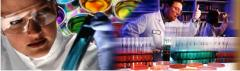 Paints and varnishes epoxypolyurethane