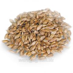 """Пшеница """"Спельта"""" не очищенная"""