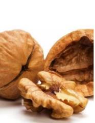 Dried walnuts
