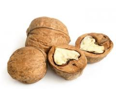 Скорлупа ореха грецкого