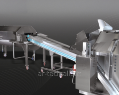 The sorting conveyor with sink