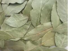 Bay leaf whole