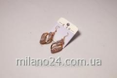 Adelaide art earrings. 3836
