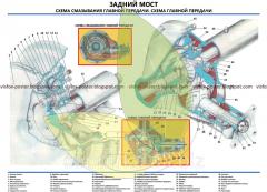Стенд устройства автомобиля Волга Задний мост