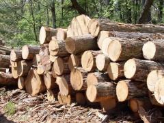 Товары из дерева