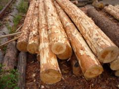Лес строительный