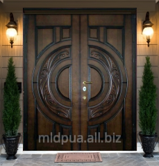 Doors entrance double Dnipropetrovsk