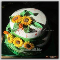 Cake gift Fall No. 013 product code: 9-33-013