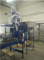 The conveyor for sorting of berries and a n