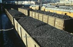 EXPERT anthracite (sunflower seed) of 6-13 mm