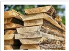Shalevka not cut of pine from the producer, Kiev,