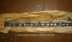 Camshaft on GAS