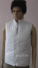 Vests corporate warmed