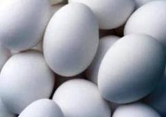 Яйца домашней птицы для потребления
