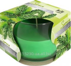 Candle Aromatic Fir-tree in Scented candles glass