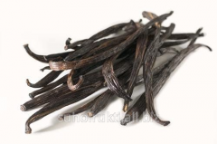 Vanilla in pods