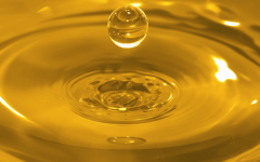 Biodiesel FAME-10 (6) - the biodiesel