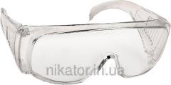 OZON goggles