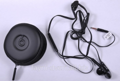 Headphones BYZ stereo headset with case