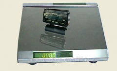 Scales electronic BP-02MSU-0,2/0,5/1, packing for