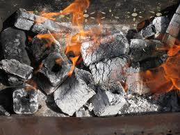 Брикеты горючие из биомассы