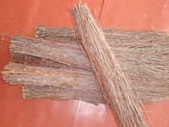 Broom birch 1s, premium