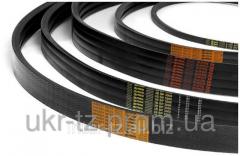 Belts maple Z(0)-2500