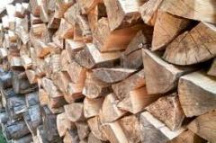 Wood fuel in the form of logs, logs, boughs,