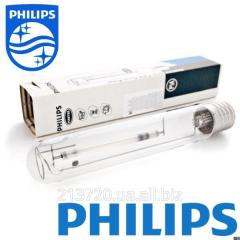 Агро лампа Philips MASTER GreenPower CG T 600W