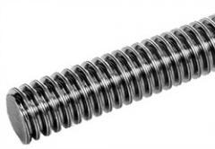 Ходовой винт. Производство: Германия.  Правая, левая резьба, двузаходная резьба.  Материал: сталь и нержавеющая сталь.