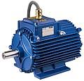 Электродвигатель специального применения Cemp