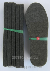Insoles for footwear fel