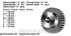 Straight-toothed cylindrical gear wheel