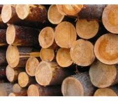 Logs are oak
