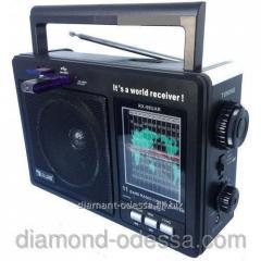 RX-99 UAR microSD/USB/Fm radio receiver