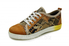 Sneakers on Palaris 2022-362516 flypaper, the