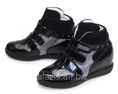 Sneakers on a flypaper of Palaris 2023-253115B,