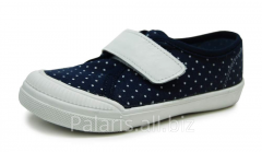Sneakers on Palaris 2050-370616 flypaper, the