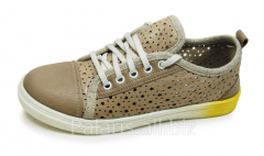 Sneakers on a flypaper of Palaris 2022-366116B,